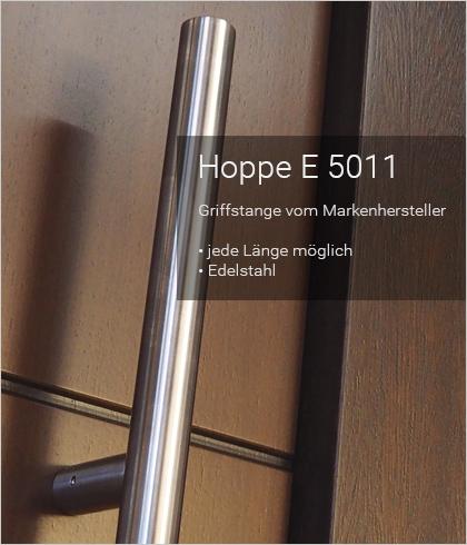 Besipielbild Haustür Origo FX 151