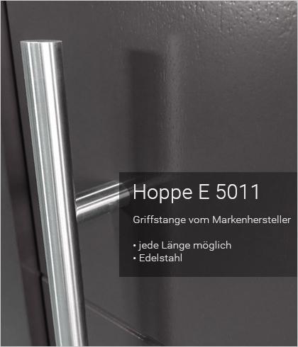 Besipielbild Haustür Origo FX 40