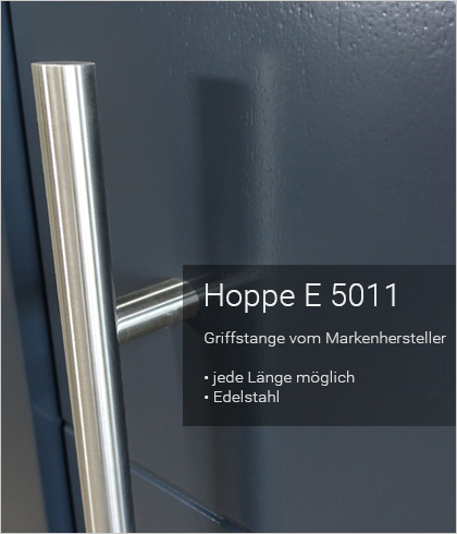 Besipielbild Haustür Origo FX 55