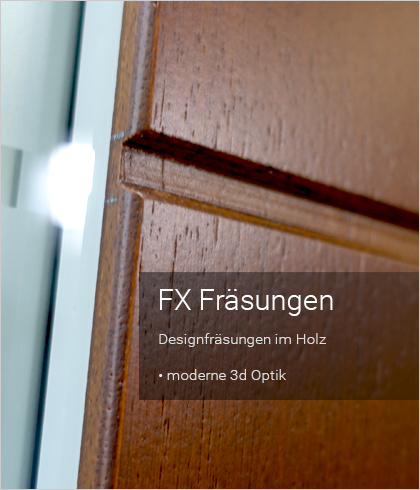 Besipielbild Haustür Origo FX 56